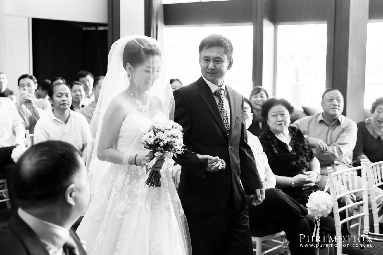150214 Puremotion Wedding Photography Brisbane Victoria Park SmartTroy-0047