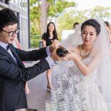 150214 Puremotion Wedding Photography Brisbane Victoria Park SmartTroy-0059