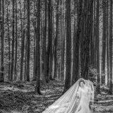 161126 Puremotion Pre-Wedding Photography Mt Fuji Japan Bali AllieWilly-0022