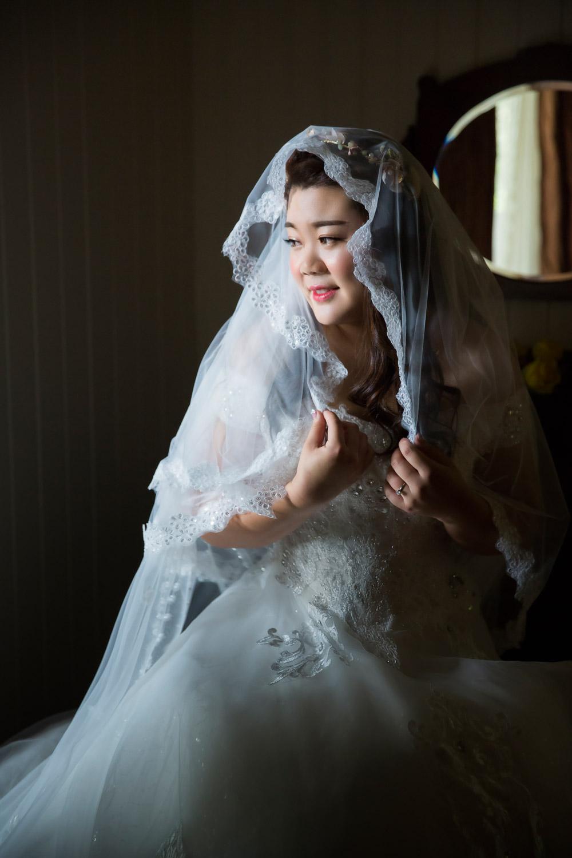 171008 Puremotion Wedding Photography Sunshine Coast Maleny Weddings at Tiffanys MayaLucas-0022