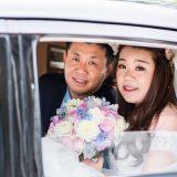 171008 Puremotion Wedding Photography Sunshine Coast Maleny Weddings at Tiffanys MayaLucas-0027