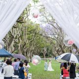 171012 Puremotion Wedding Photography Brisbane Park Jacaranda MekBernie-0020