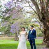 171012 Puremotion Wedding Photography Brisbane Park Jacaranda MekBernie-0050