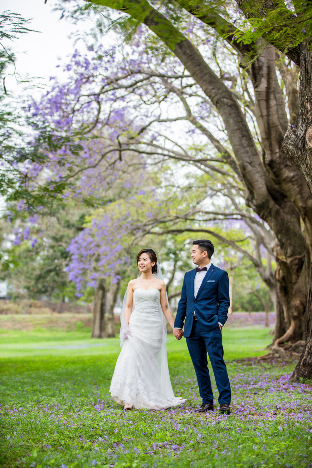 171012 Puremotion Wedding Photography Brisbane Park Jacaranda MekBernie-0050