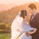 171220 Puremotion Pre-Wedding Photography Brisbane Maleny ChristineBen-0036