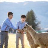 180701 Puremotion Pre-Wedding Photography New Zealand Alex Huang Wanping MarcShane-0002