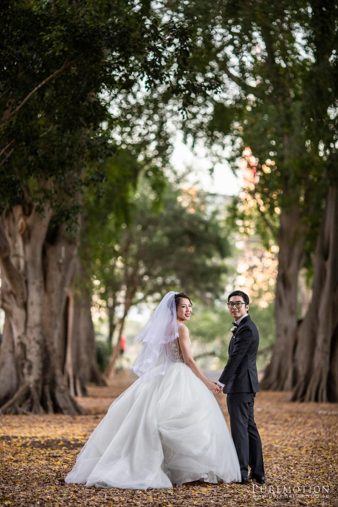 180818 Puremotion Wedding Photography Brisbane Alex Huang MichelleConan Room 360_Site-0088