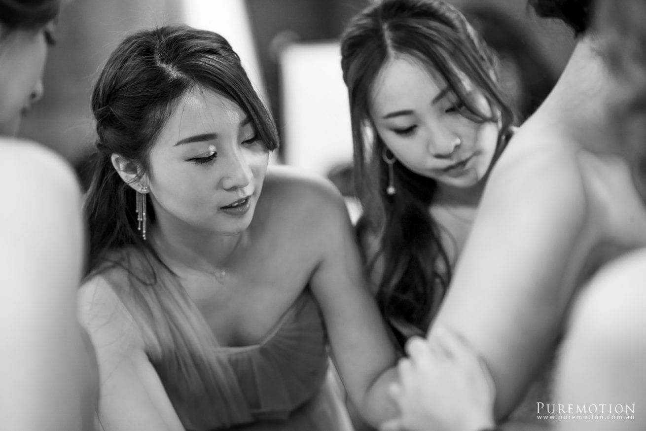 180830 Puremotion Wedding Photography Kooroomba Lavender Alex Huang NoraOscar-0025