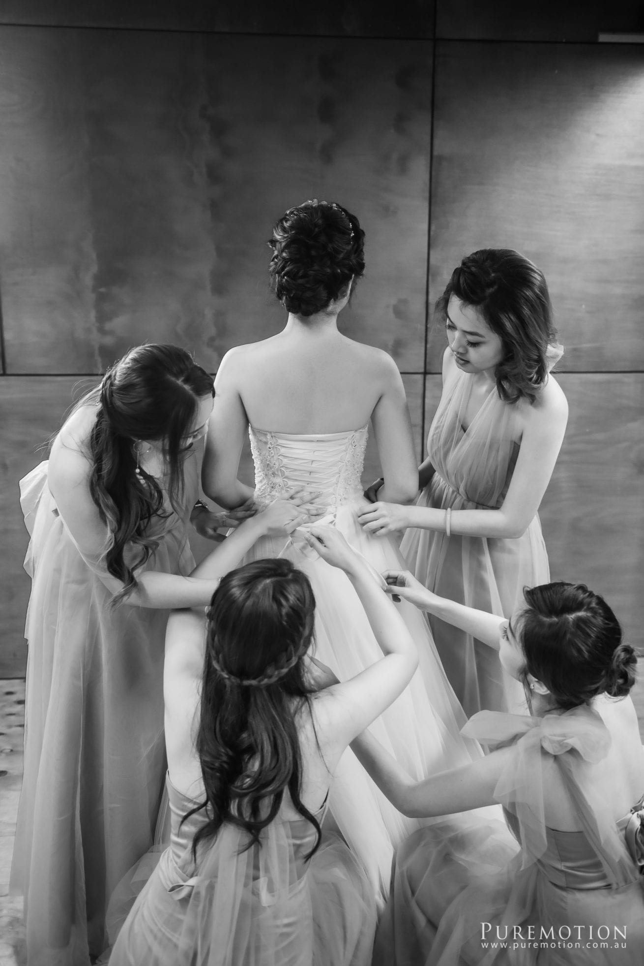 180830 Puremotion Wedding Photography Kooroomba Lavender Alex Huang NoraOscar-0026