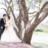 181106 Puremotion Pre-Wedding Photography Alex Huang Brisbane Maleny MableJay-0004