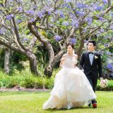 181106 Puremotion Pre-Wedding Photography Alex Huang Brisbane Maleny MableJay-0006