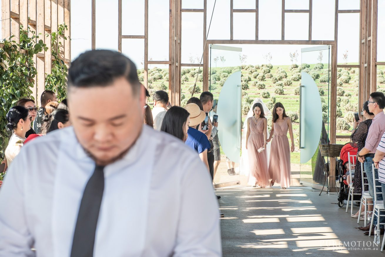 190323 Puremotion Wedding Photography Kooroomba Lavender Alex Huang ArielRico_Edited-0031