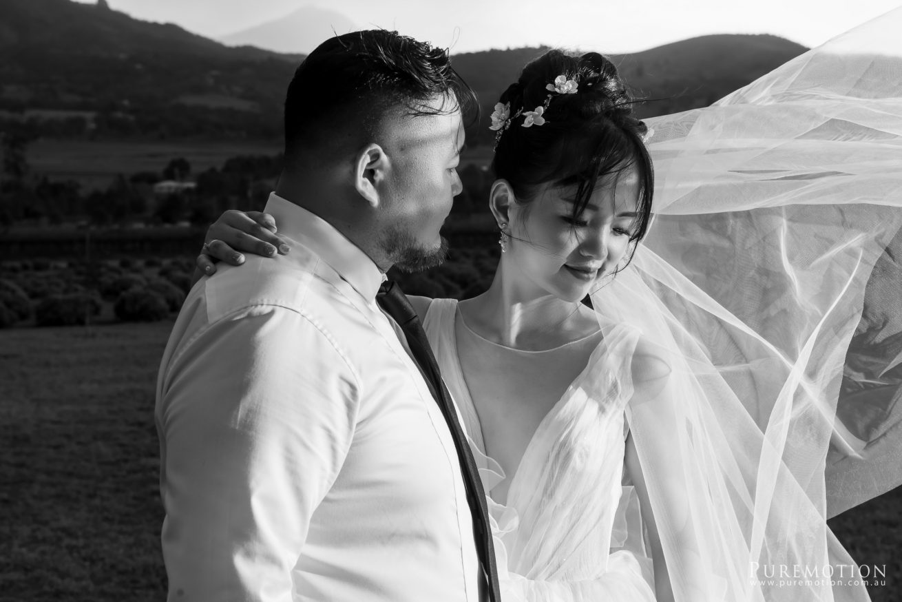 190323 Puremotion Wedding Photography Kooroomba Lavender Alex Huang ArielRico_Edited-0072