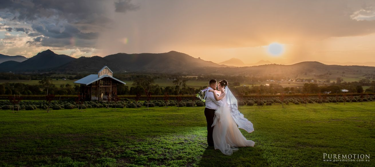 190323 Puremotion Wedding Photography Kooroomba Lavender Alex Huang ArielRico_Edited-0073
