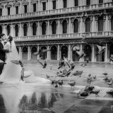 141105 Puremotion Pre-Wedding Photography Italy Venice Rome Alex Huang ElainShihyen-0038