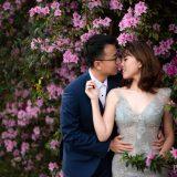190901 Puremotion Pre-Wedding Photography Brisbane Alex Huang EllieBruno_Edited-0077