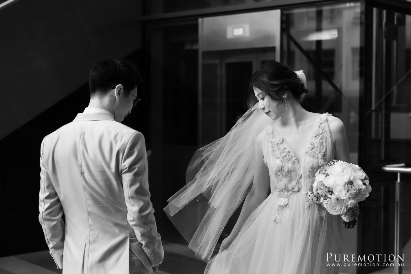 190928 Puremotion Wedding Photography Brisbane Alex Huang AnaDon-0034