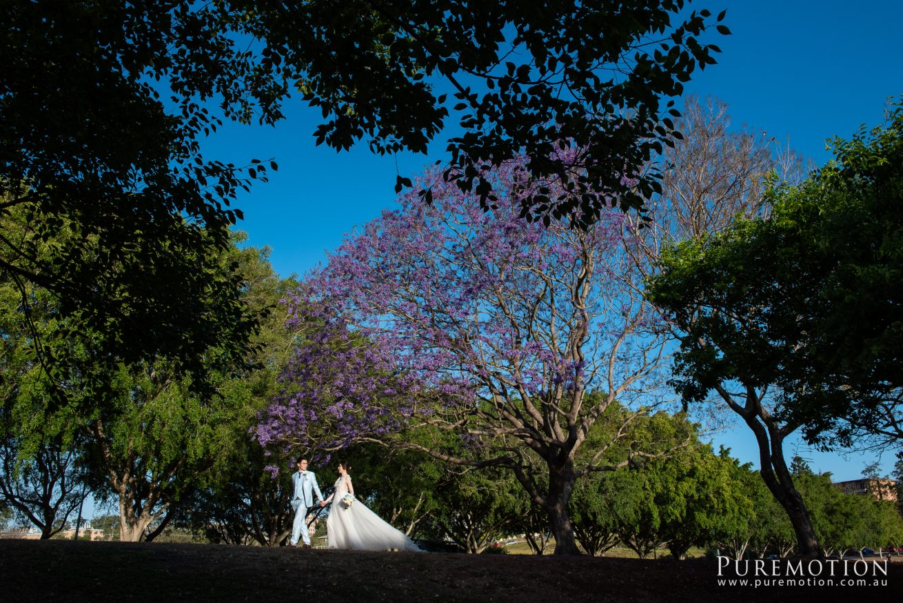 190928 Puremotion Wedding Photography Brisbane Alex Huang AnaDon-0068
