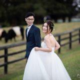 191010 Puremotion Pre-Wedding Photography Brisbane Alex Huang CherryHugh_Edit-0005-2-0077