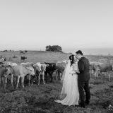 191110 Puremotion Pre Wedding Photography Brisbane Alex Huang Sunshine Coast XiaoJeff_Post-0048