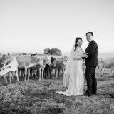191110 Puremotion Pre Wedding Photography Brisbane Alex Huang Sunshine Coast XiaoJeff_Post-0049