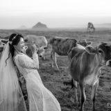 191110 Puremotion Pre Wedding Photography Brisbane Alex Huang Sunshine Coast XiaoJeff_Post-0050