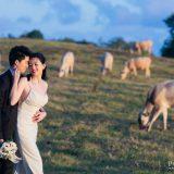 191125 Puremotion Pre Wedding Photography Brisbane Alex Huang Sunshine Coast JuriWilliam_Edited Web-0032