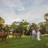 170204 Puremotion Pre-Wedding Photography Alex Huang Brisbane Sunshine Coast WinnieTony-0023
