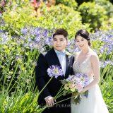 181103 Puremotion Wedding Photography Alex Huang StephBen-0056