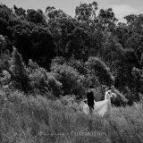 181103 Puremotion Wedding Photography Alex Huang StephBen-0060