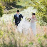181103 Puremotion Wedding Photography Alex Huang StephBen-0061