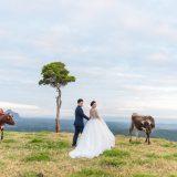 200604 Puremotion Pre Wedding Photography Brisbane Alex Huang Sunshine Coast SharonAfu_Site-0054