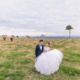 200604 Puremotion Pre Wedding Photography Brisbane Alex Huang Sunshine Coast SharonAfu_Site-0057