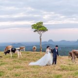 200604 Puremotion Pre Wedding Photography Brisbane Alex Huang Sunshine Coast SharonAfu_Site-0061